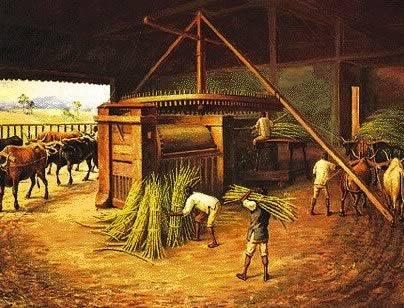 Engenho de cana-de-açúcar utilizado por escravos no Período do Ciclo do Açúcar