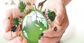 Termos Utilizados na Ecologia