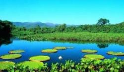 ecossistema de agua doce