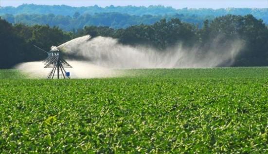 irrigacao em uma plantacao